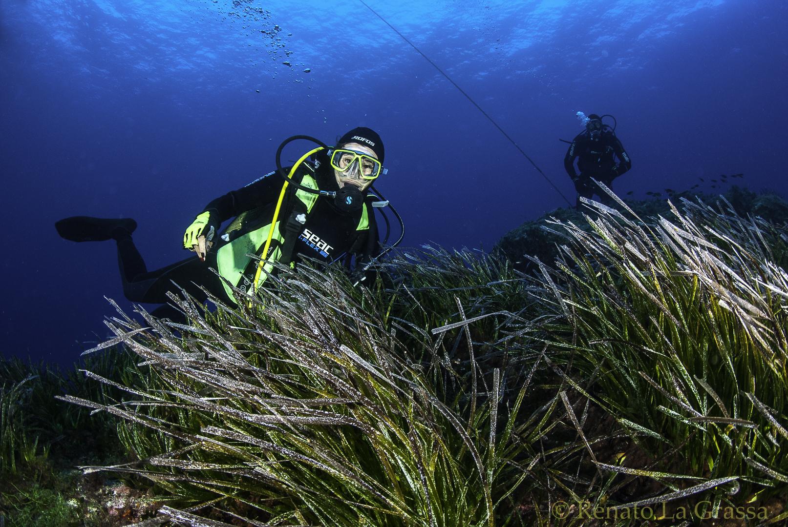 Videogallery – Crociera subacquea Isole Egadi – Sett.-Ott. 2020
